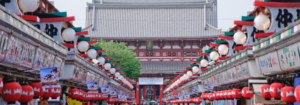 会計士 日本 会 東京 公認 協会